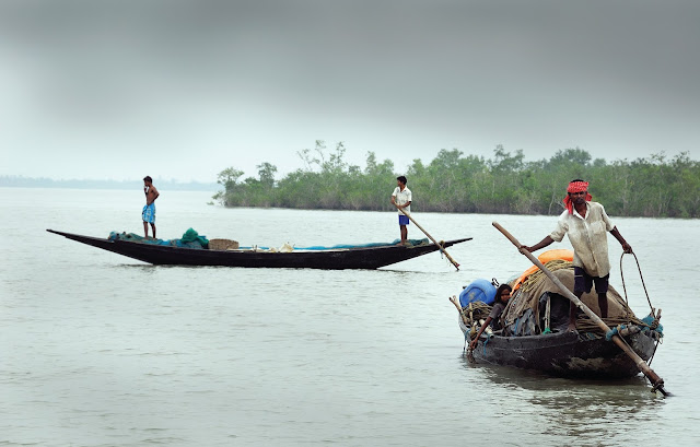 Boats in Sundarbans Ganges Delta