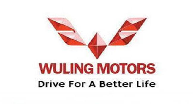 Lowongan Kerja Pekanbaru PT Arista Jaya Lestari (Wuling Motors)