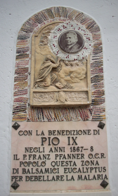 Beato Pio IX lotta contro malaria