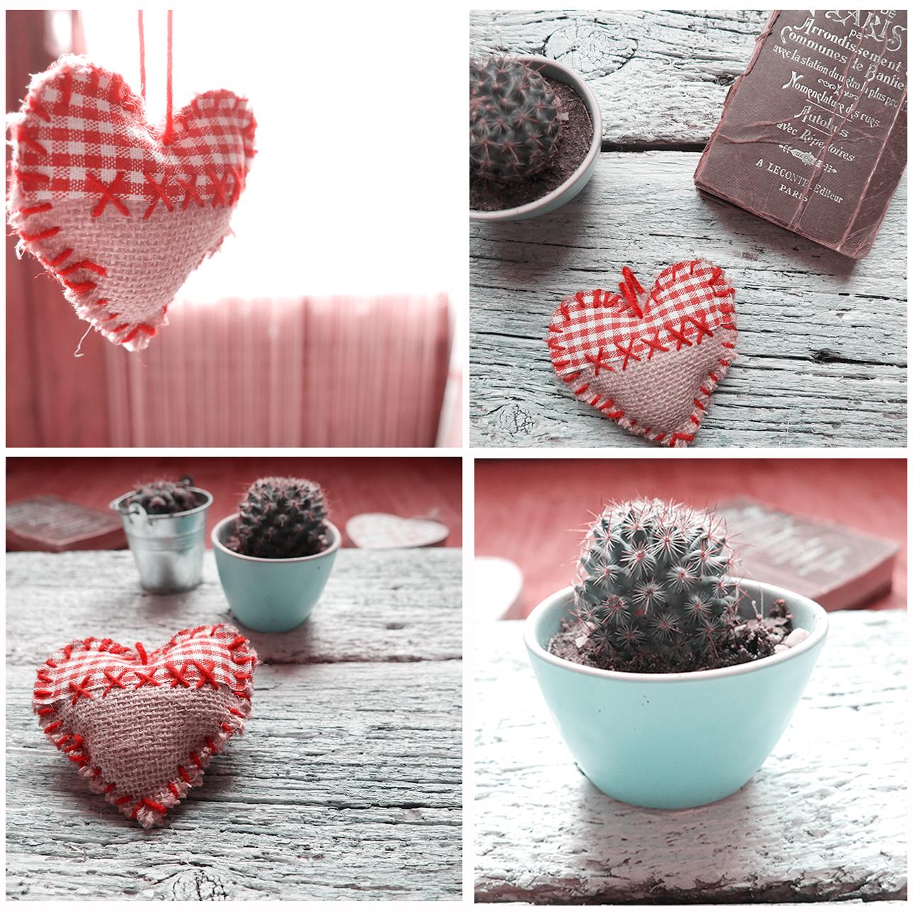 heart and cactus christmas
