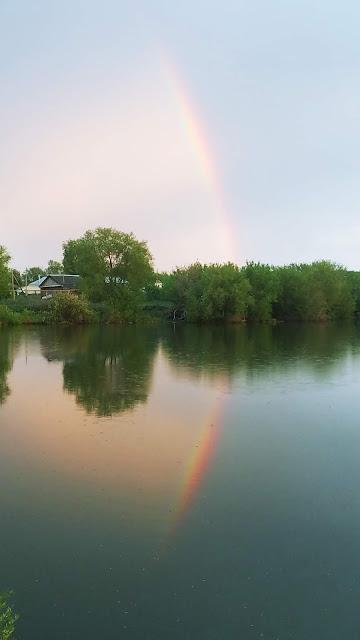 радуга над озером после дождя