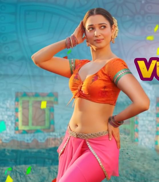 Tamannaah Hot Sexy Pics from Seetimaarr Movie JwalaReddy Song Navel Queens