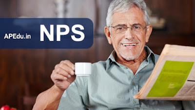 NPS rules on voluntary retirement of public servants