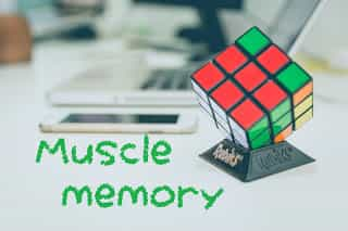 MUSCLE MEMORY TRAINING - brain has a greater memory power - Definition- fashion fitify