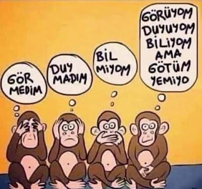 Görmedim, duymadım, bilmiyom, üç maymun, dört maymun, karikatür, götüm yemiyor,  komik paylaşımlar, komedi