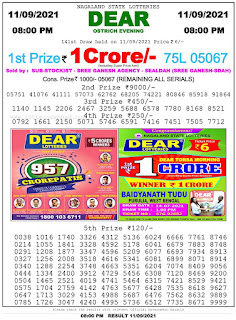 Nagaland State Lottery Result Today 8pm