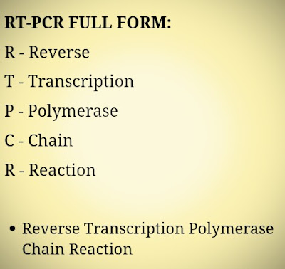 What Is RT-PCR Full Form? [RT-PCR Full Form]