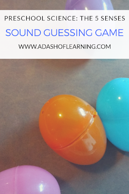 sound guessing game: preschool science of the sense of sound