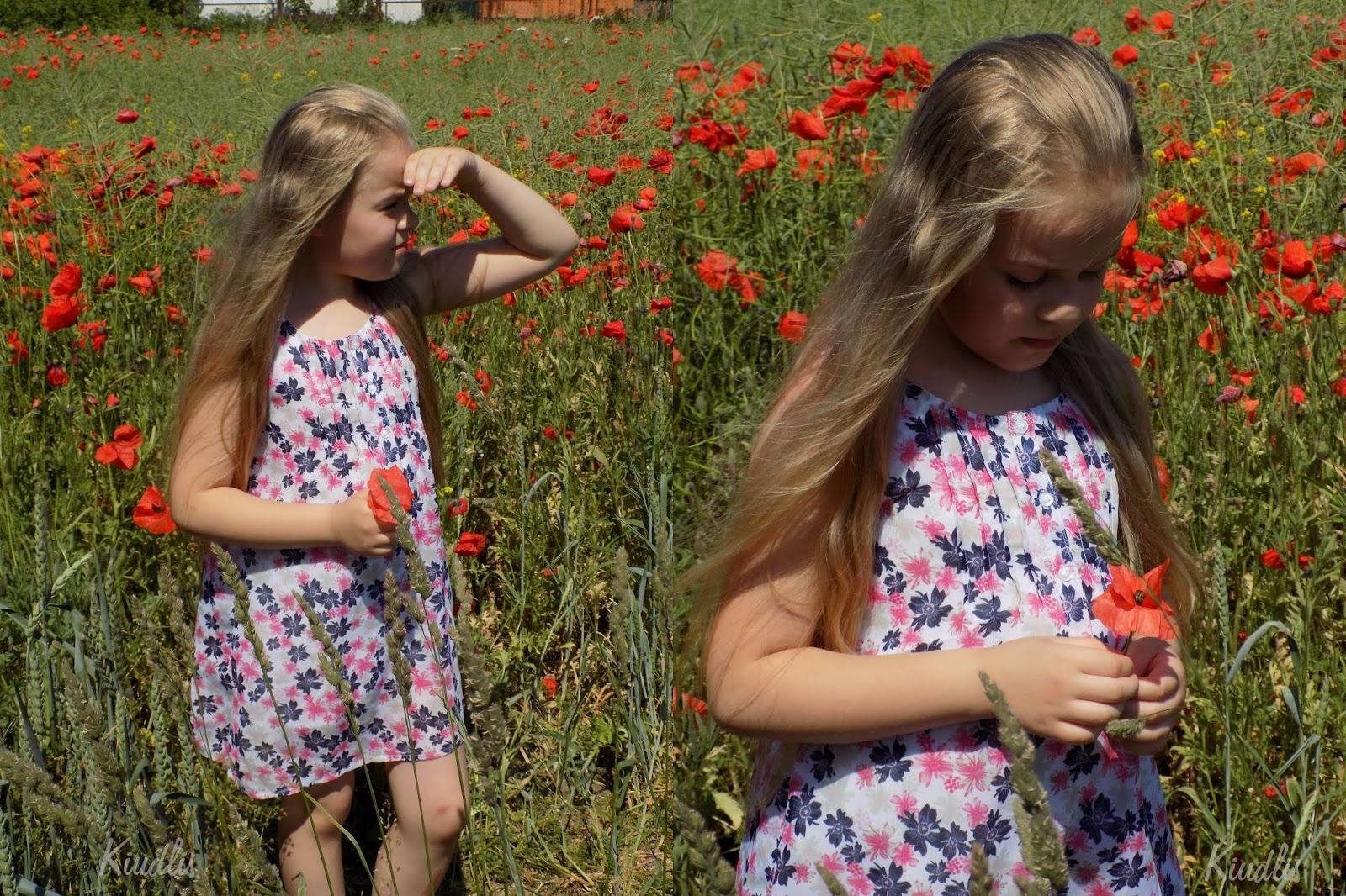 Wśród polnych kwiatów.