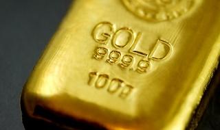 NISAで毎年年初に一括投資 気分は不動産王?それとも大富豪?REIT投信とゴールド投信の成績は?