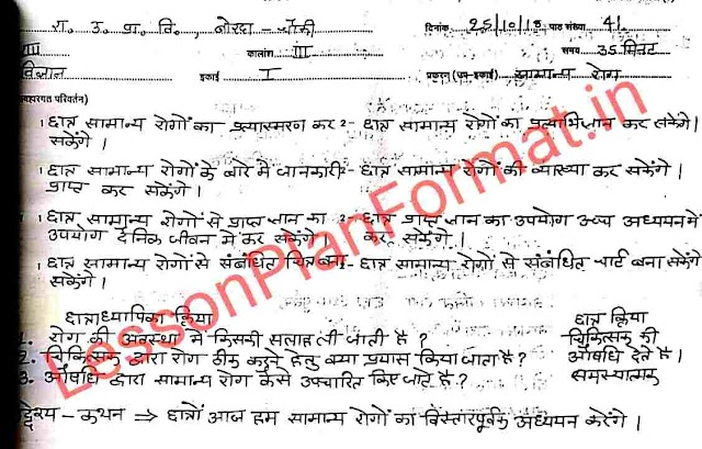 Disease Lesson Plan in Hindi for Science