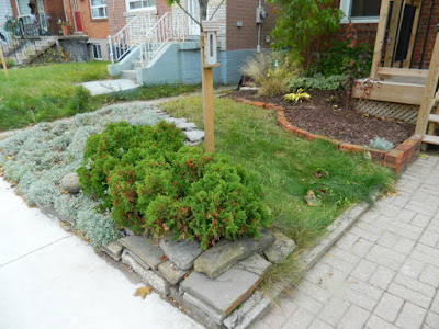 East York Toronto Front Garden Cleanup After by Paul Jung Gardening Services--a Toronto Gardening Services Company