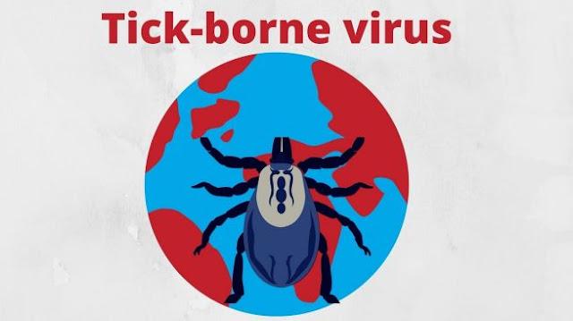 China Temukan Virus Tick-Borne dari Gigitan Kutu, Sudah 67 Orang Terinfeksi