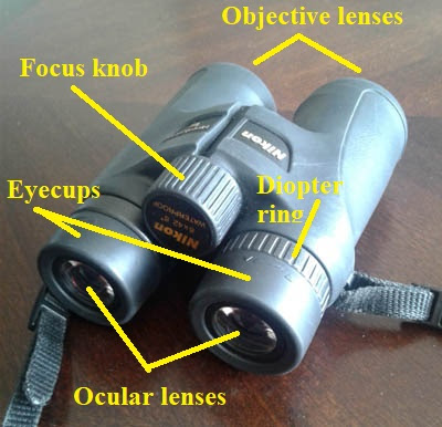 Image of binoculars with labels