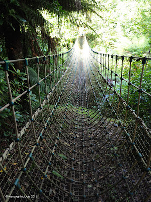 Burma Rope Bridge Heligan