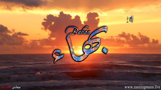 معنى اسم بهاء وصفات حامل هذا الاسم Bahaa