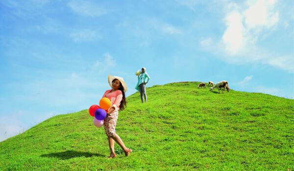 Objek Wisata Bukit Teletubbies Prambanan Yogyakarta Indephedia Com