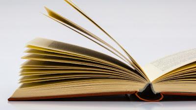 Buku Bajakan Yang Ada di Rak Buku Saya