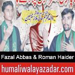 https://humaliwalaazadar.blogspot.com/2019/09/fazal-abbas-roman-haider-nohay-2020.html