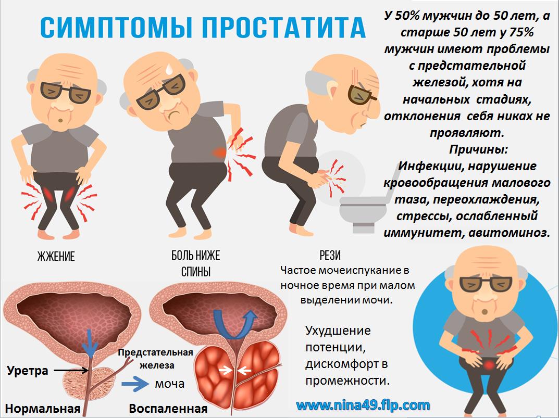 помогает ли алоэ от простатита