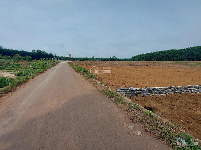 Đất Sào Xã Đồi 61