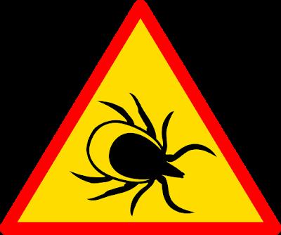 عضات ولدغات الحشرات: علاجات منزلية لتخفيف الحكة والتورم