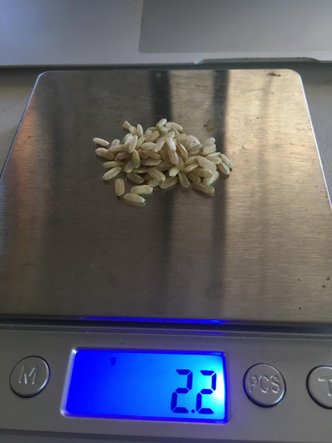 masa de 200 arroz