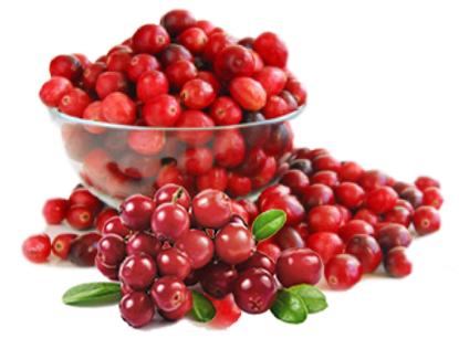 Ekstrak cranberry untuk mencegah dan mengobati anyang-anyangan