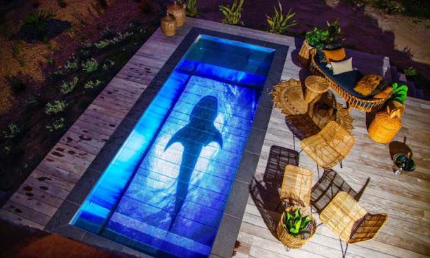 Pooloop, la société qui transforme votre piscine en écran géant !