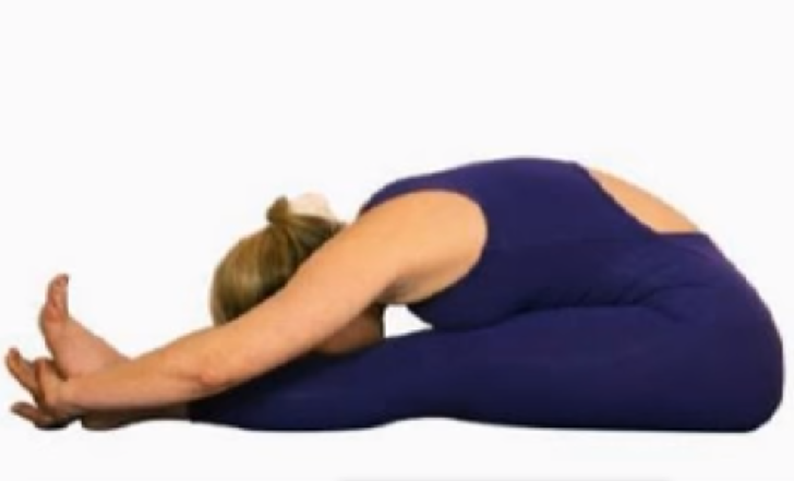 The Noble Pose (Ugra-asana)
