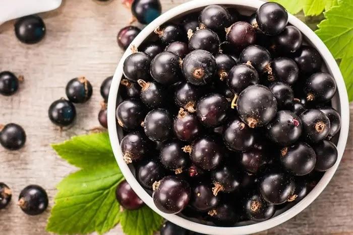 manfaat acai berry untuk kesehatan dan kecantikan