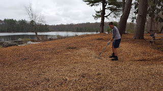 Deputy Town Administrator Jamie Hellen helped to knock down and spread out a pile of mulch