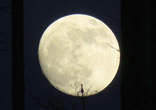Księżyc tuż przed pełnią.