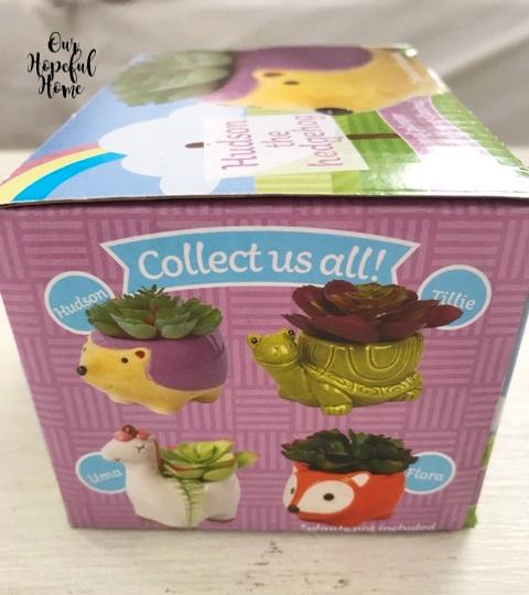 Hudson hedgehog Tillie turtle Uma llama Flora Fox planter box