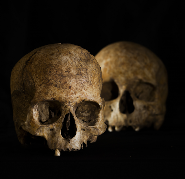 New funerary and ritual behaviours of Neolithic Iberian populations discovered