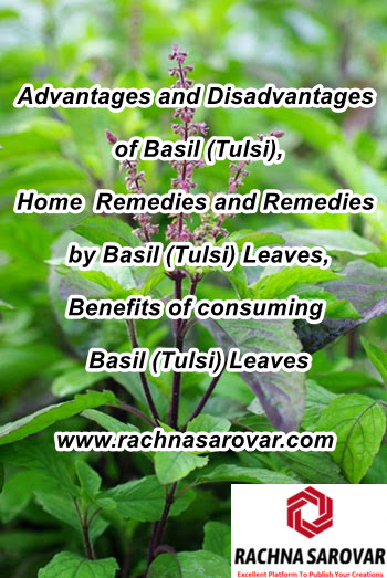 Advantages and Disadvantages of Basil (Tulsi), Home  Remedies and Remedies by Basil (Tulsi) Leaves, Benefits of consuming Basil (Tulsi) Leaves