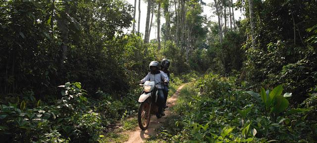 Marie-Roseline Bélizaire, médica y epidemióloga de la Organización Mundial de la Salud viaja en el bosque de Itipo. WHO/Lindsay Mackenzie