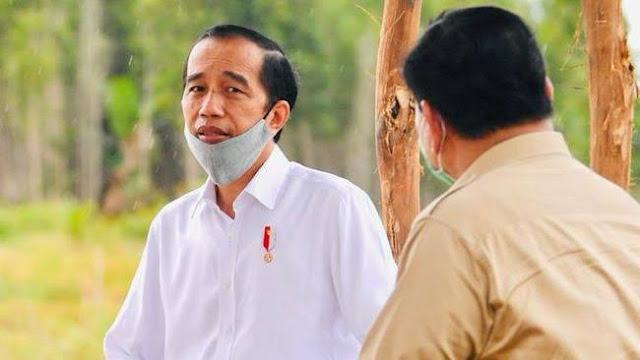Prabowo Dilema, Tetap Jadi Anak Buah Jokowi atau Keluar Koalisi Tanpa Disambut Pendukung