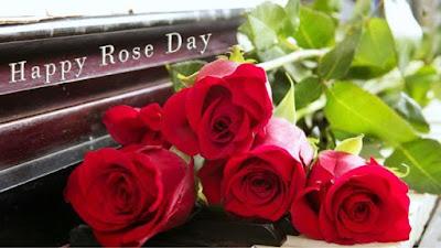 rose day shayari with photos