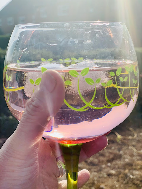 pink gin in gin glass