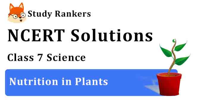 NCERT Solutions for Class 7 Science Chapter 1 Nutrition in Plants