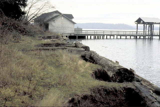 Photo of bulkhead at Luhr Beach along Nisqually River delta in south Puget Sound.