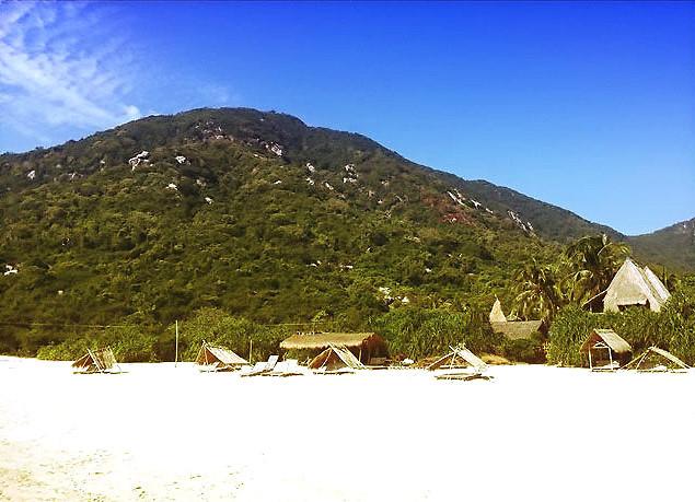 шикарная природа jungle beach