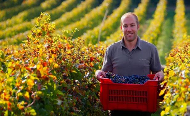 Los mayores exportadores de vino del mundo