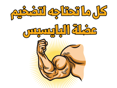 تضخيم عضلة البايسبس