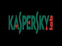https://www.lojakaspersky.com.br/