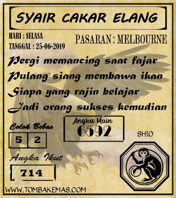SYAIR MELBOURNE 25-06-2019