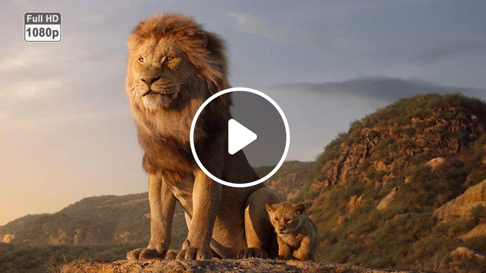 lion king online sa prevodom # 49