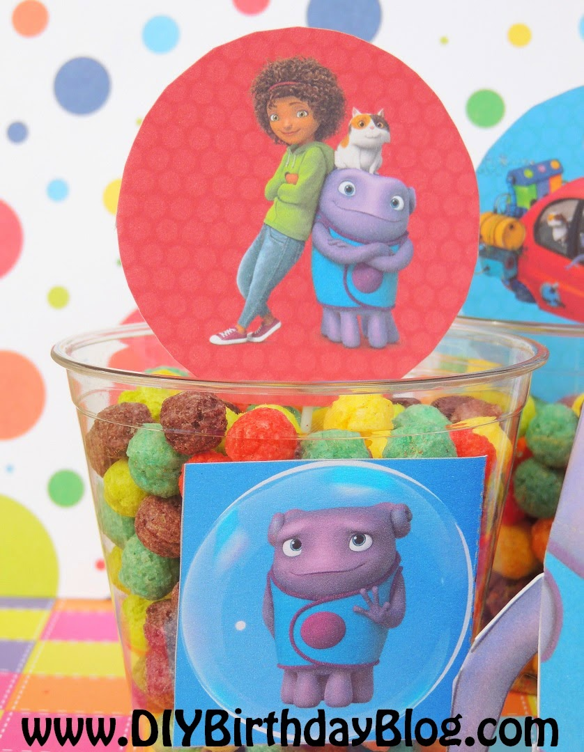 DIY Birthday Blog: Home Birthday Party Idea- Tip, Oh, Pig ...