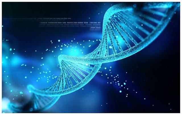 Λειτουργίες ενεργοποίησης και απενεργοποίησης DNA που ελέγχονται με χρήση φωτός
